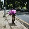 Kay Fochtmann - Brasilien - Belem - street - umbrella - travel photography