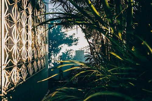 Kay Fochtmann - Brasilien - Mesquita - garten - travel photography