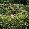 Kay Fochtmann - Brasilien - grün - friends - hike - jungle - travel - lifestyle photography
