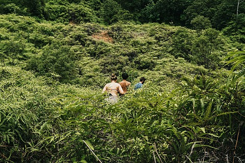 Kay Fochtmann - Brasilien - grün - friends - hike - jungle - travel - lifestyle photography