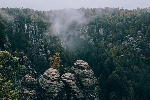 Kay Fochtmann - Deutschland - Elbsandsteingebirge - Nebel - travel photography