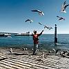 Kay Fochtmann - Portugal - Lissabon - man - seagulls - travel photography