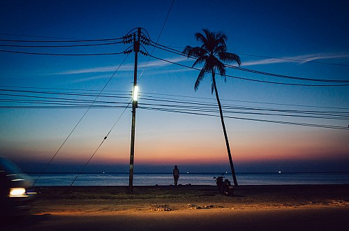 Kay Fochtmann - Thailand - Bangkok - night - palms - travel photography