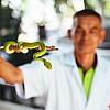 Kay Fochtmann - Thailand - Bangkok - snake - man - schlange - viper - travel photography